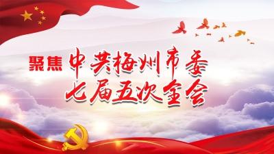 直播回顾丨梅州市委七届五次全会