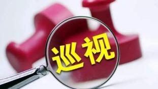 """李远青到大埔巡查河长制工作:重点组织开展""""五清""""行动"""